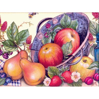 10 5/16 in x 15 ft Prepasted Wallpaper Borders - Fruits Wall Paper Border b4026wc