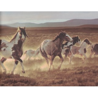 9 in x 15 ft Prepasted Wallpaper Borders - Horses Wall Paper Border B96510
