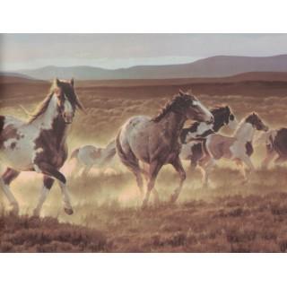 9 in x 15 ft Prepasted Wallpaper Borders - Horses Wall Paper Border B96510