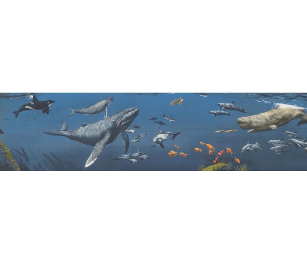 Sea World Borders Sea World Wallpaper Border 11351 BE York Wallcoverings