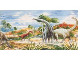 Dinosaur Wallpaper Border 11361 BE 12