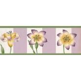 Floral Wallpaper Borders: Floral Wallpaper Border 2061 BN