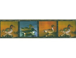 Prepasted Wallpaper Borders - Birds Wall Paper Border FDB03845