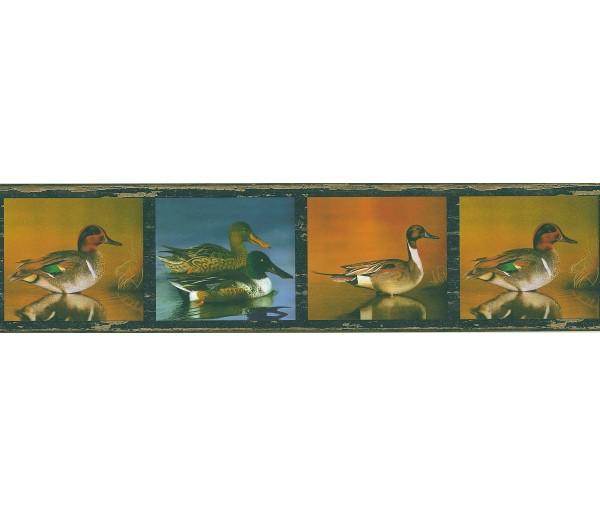 Birds Birds Wallpaper Border FDB03845