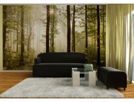 Wall Mural - Wallpaper Mural for Accent Wall Non-woven FTN 2447