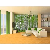 Murals Wall Mural - Wallpaper Mural for Accent Wall Non-woven FTN 2448