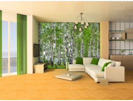Wall Mural - Wallpaper Mural for Accent Wall Non-woven FTN 2448
