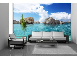 Wall Mural - Wallpaper Mural for Accent Wall Non-woven FTN 2452
