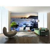 Wall Mural - Wallpaper Mural for Accent Wall Non-woven FTN 2453