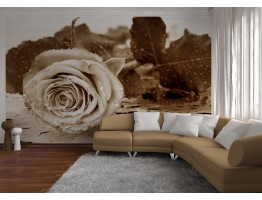 Wall Mural - Wallpaper Mural for Accent Wall Non-woven FTN 2458