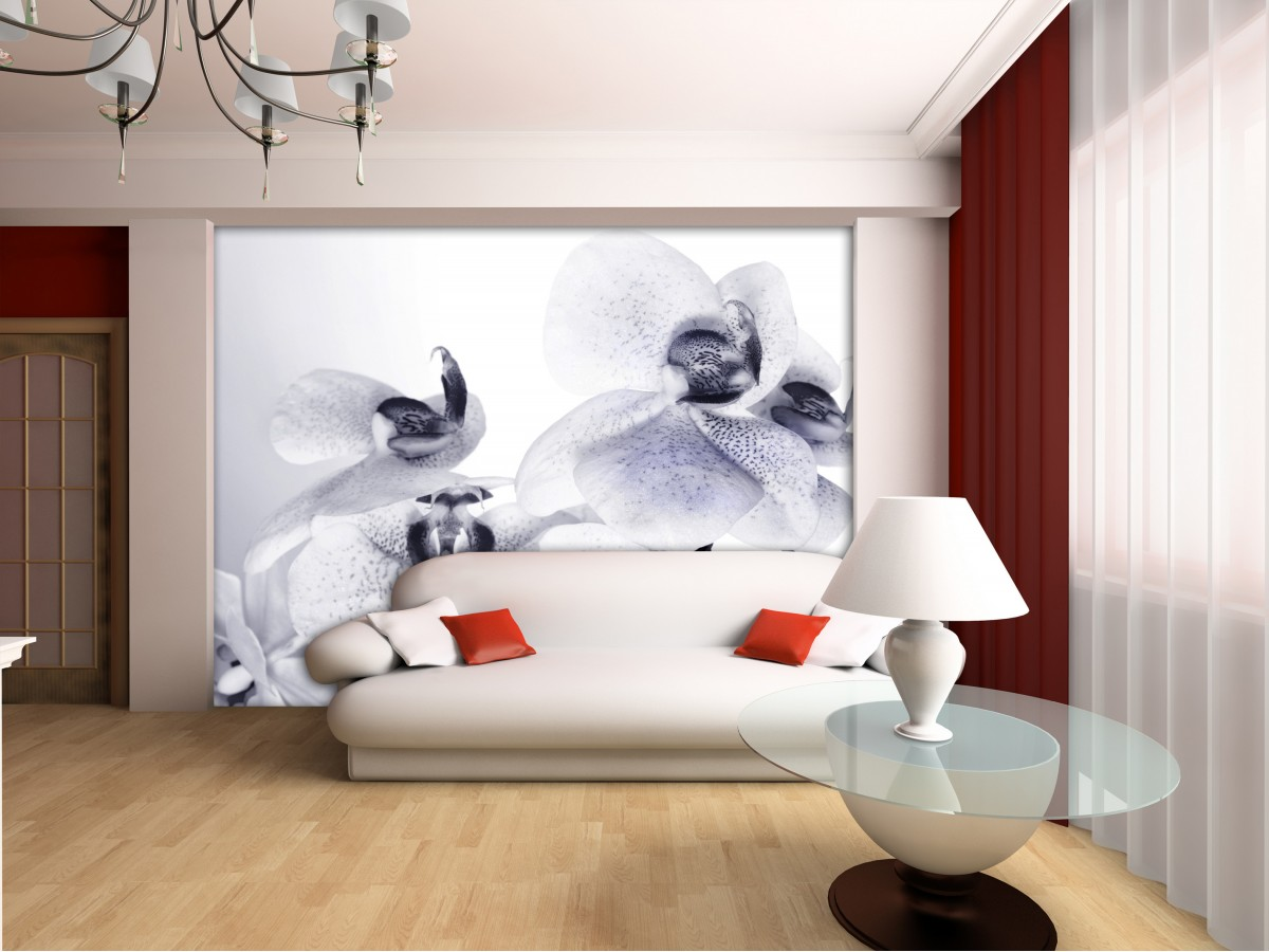 Wall Mural - Wallpaper Mural for Accent Wall Non-woven FTN ...