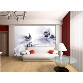 Murals: Wall Mural - Wallpaper Mural for Accent Wall Non-woven FTN 2464