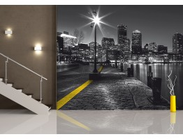 Wall Mural - Wallpaper Mural for Accent Wall Non-woven FTN 2467