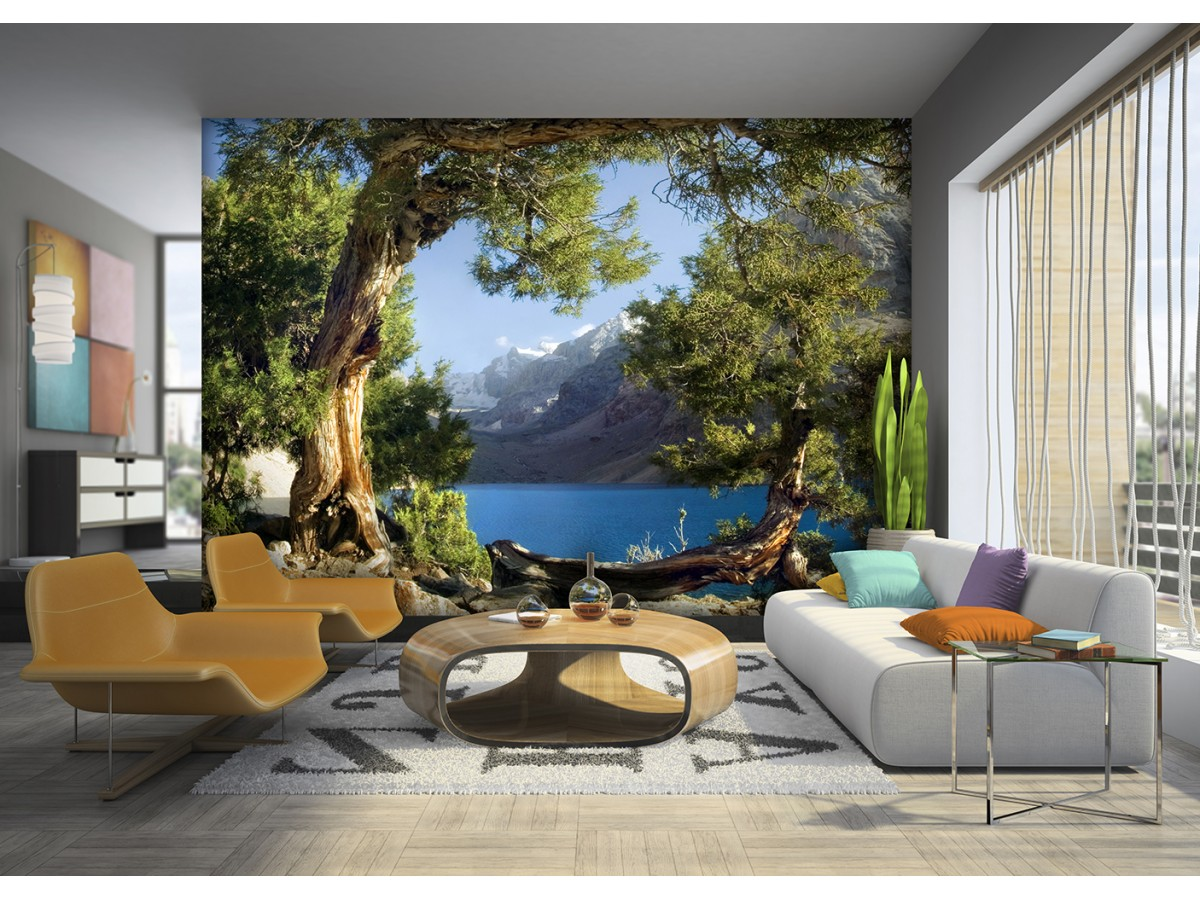 murals wall mural wallpaper mural for accent wall non. Black Bedroom Furniture Sets. Home Design Ideas