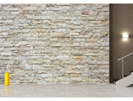 Wall Mural - Wallpaper Mural for Accent Wall Non-woven FTN XXL 2412