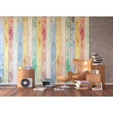 Wall Mural - Wallpaper Mural for Accent Wall Non-woven FTN XXL 2430