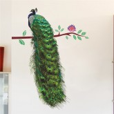 Wall Decals: Peacock Wall Decals HM0244