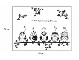 Owl Bird Wall Decals HM18353
