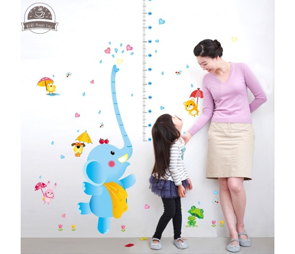 Wall Decals Kids Height Chart Wall Decals HM1SK9111
