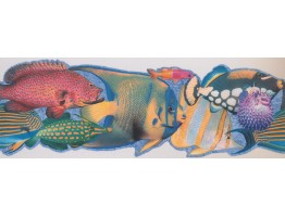Fish Wallpaper Border 4041 ISB