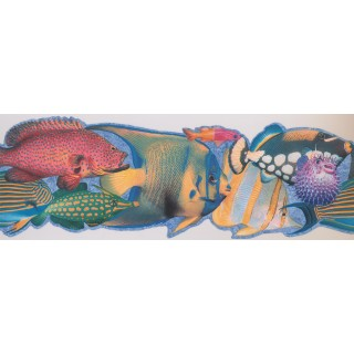 9 in x 15 ft Prepasted Wallpaper Borders - Fish Wall Paper Border 4041 ISB