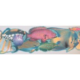 Sea World Wall Borders: Fish Wallpaper Border 4042 ISB