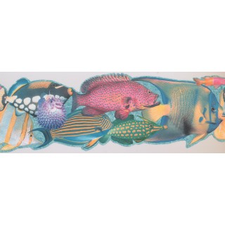 8 in x 15 ft Prepasted Wallpaper Borders - Fish Wall Paper Border 4042 ISB