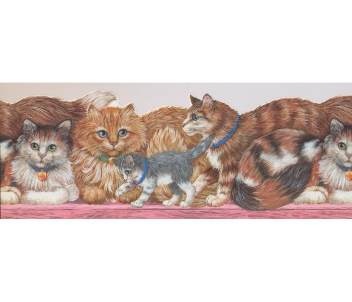 Cats Wallpaper Borders: Cats Wallpaper Border 4101 ISB