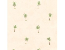 Palm Tree Wallpaper JFM2876