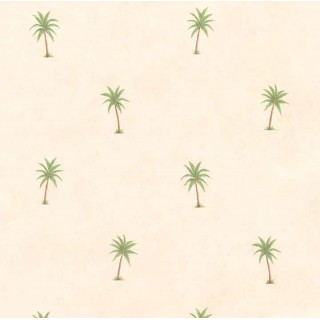 Palm Tree Wallpaper JFM2876