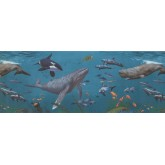 Sea World Borders Sea World Wallpaper Border 1282 KZ York Wallcoverings