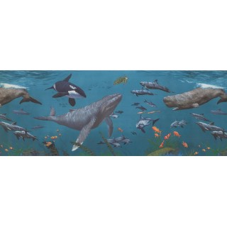 9 in x 15 ft Prepasted Wallpaper Borders - Sea World Wall Paper Border 1282 KZ