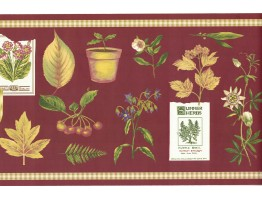 Prepasted Wallpaper Borders - Summer Herbs Wall Paper Border SPB5713