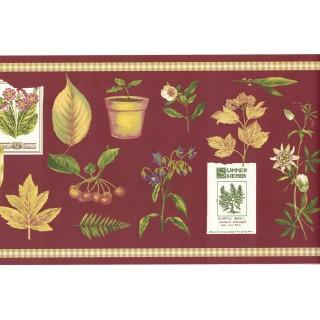 7 in x 15 ft Prepasted Wallpaper Borders - Summer Herbs Wall Paper Border SPB5713