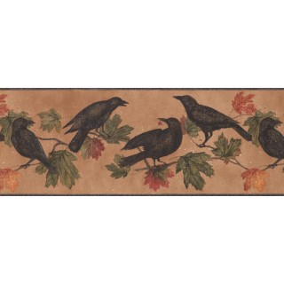 9 in x 15 ft Prepasted Wallpaper Borders - Birds Wall Paper Border 5687 WL