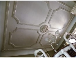 Ceiling and Wall Relief 3-1/4 inch WR-9100 Molding