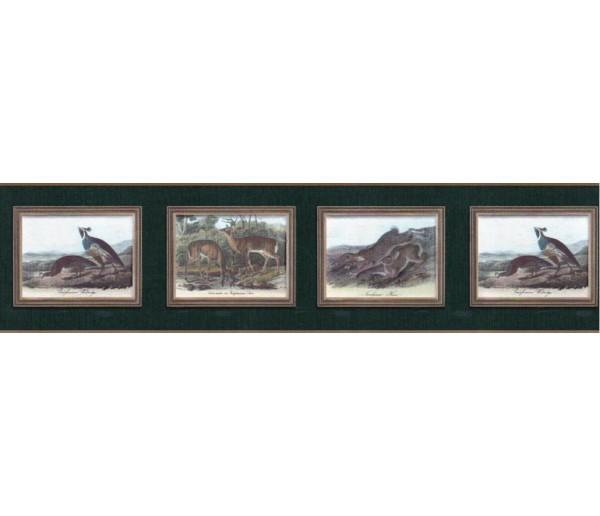 Clearance Animals Wallpaper Border b102654