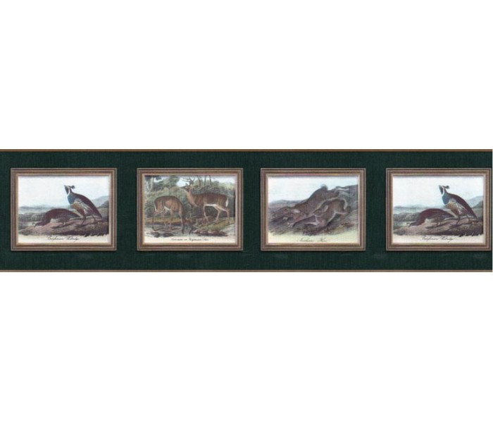 Clearance: Animals Wallpaper Border b102654