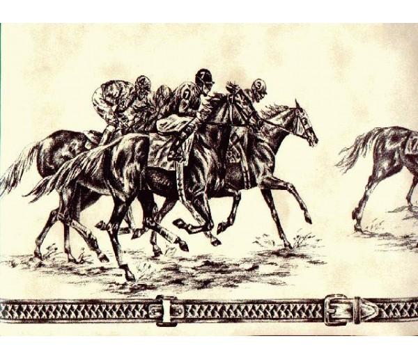 Horses Wallpaper Borders: Horses Wallpaper Border b1212ps