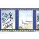 Birds  Wallpaper Borders: Birds Wallpaper Border b145227