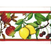 Clearance: Fruits Wallpaper Border b167217