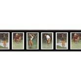 Golf Wallpaper Borders: Golf wallpaper Border B2004PG