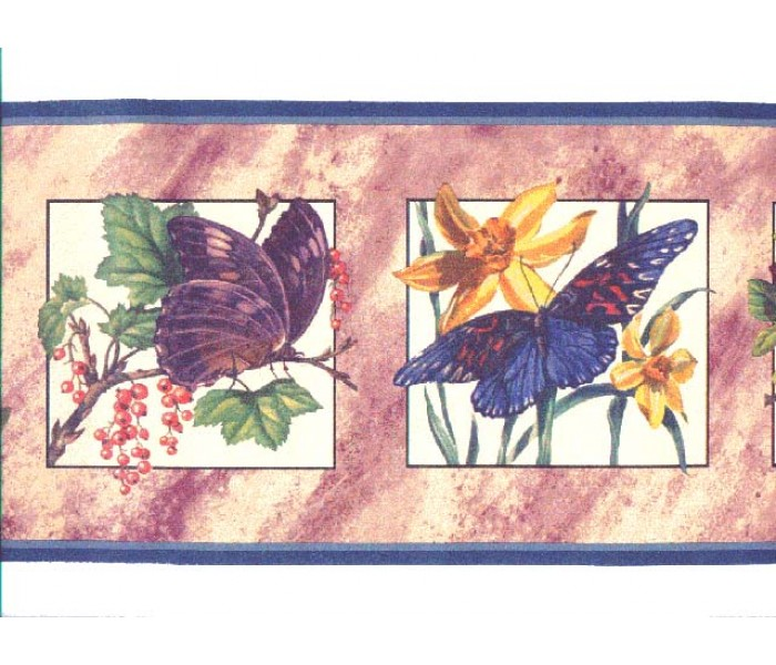 Birds  Wallpaper Borders: Butterfly Wallpaper Border b2081nf