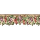 Garden Wallpaper Borders: Grape Fruits Wallpaper Border FF22021DB