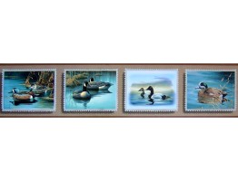 Birds Wallpaper Border B2231DU