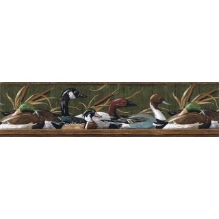 6 7/8 in x 15 ft Prepasted Wallpaper Borders - Ducks Wall Paper Border MRL2416