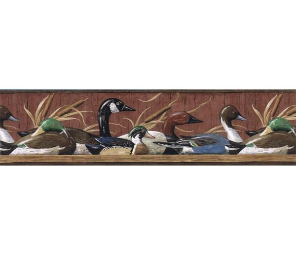 Birds  Wallpaper Borders: Ducks Wallpaper Border MRL2418