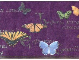 9 in x 15 ft Prepasted Wallpaper Borders - Butterfly Wall Paper Border b267223
