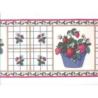 6 7/8 in x 15 ft Prepasted Wallpaper Borders - Cherry Fruits Wall Paper Border b3015we