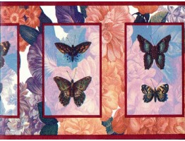 Prepasted Wallpaper Borders - Butterfly Wall Paper Border b3063